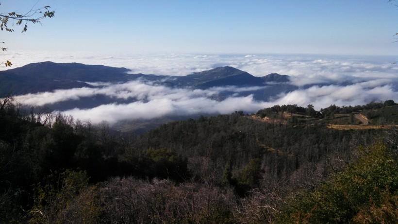 Palomar Summit
